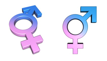 Blue Male/Pink Female Symbol on White