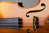 Violin Bridge and Strings