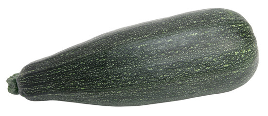 One marrow isolated on white background
