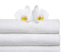 2 Orchids on white Towels