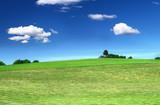 mowed lawn, beautiful cumulus clouds in background poster