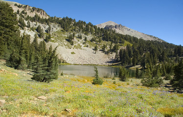 a tree lined Mountain lake in Lassen National Park