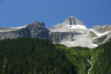 landscape in British Columbia. Glacier National Park.