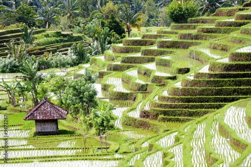 Aluminium Indonesië Bali 0161