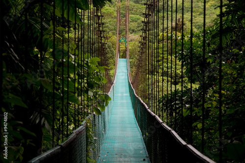 a hanging bridge in the costa rican jungle - 9474802