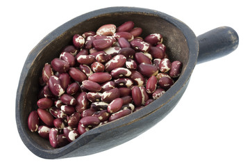 white and purple Anasazi beans on a primitive wooden scoop