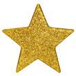 goldener weihnachtsstern (incl. clipping-path / freistell-pfad)