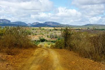 Route de terre, Campagne brésilienne.Brazilian road.