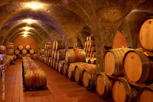 Weinkeller,Rotwein im Barrique Faß ausgebaut,Toskana,Italien - 9502878