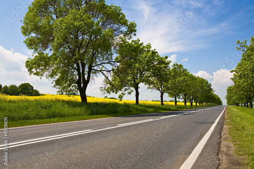 poster of Straight, empty road in rural scenery