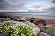 the Inch Beach Dingle