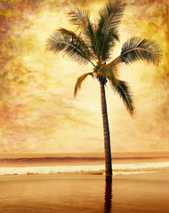A sepia-toned palm tree done in a vintage style.
