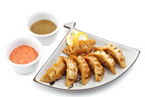 Japan Fish Dumplings with Two Type Sauce poster