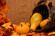 Fall leaves with pumpkins and gourds in basket on brown