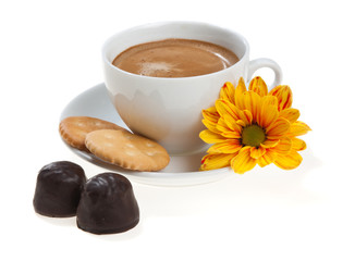 Cappuccino cup with biscuits, sweets and flower, isolated