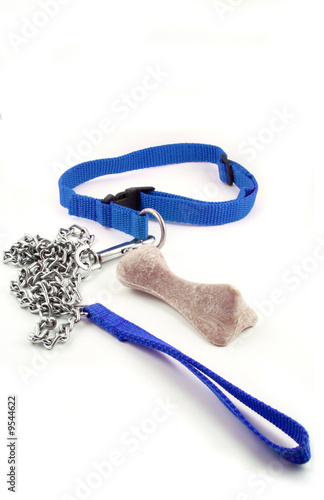 poster of blue masculine dog leash chain and dog buiscuit .