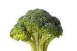 A green stalk of broccoli on a white background with copy space poster