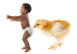 Beautiful african baby running scared by a huge chicken poster