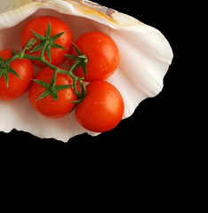 Bunch of red tomatos in a seashell