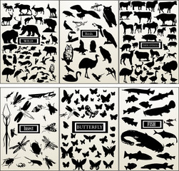 Animal - big vector collection