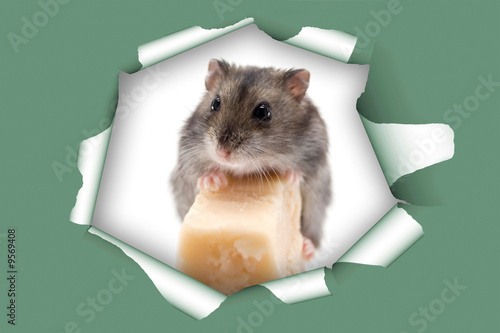 mouse and cheese in heat hole