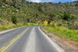 Virage au bout de la route, Brésil.Turn down the road, Brazil.