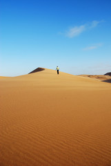 Sand dunes of the Namib desert
