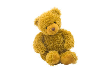 Toy bear isolated on a white background