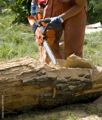 Worker using chain saw to cut out wood sculpture