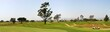 Panoramic shot of a golf fairway near Ventura