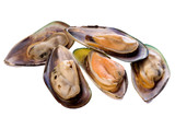 Isolated image of fresh mussels. poster