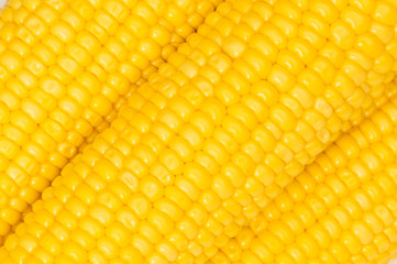 Extreme close up of yellow corn cobs