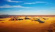 Namib Desert, dunes of Sossusvlei, bird