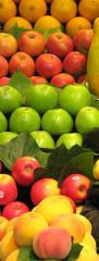 Fruits verticaux