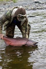 Releasing Wild Salmon