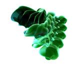 abstrakte grüne kurven