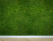 wallpaper with grass texture .Slight vignetting added