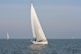 Sailing on the IJsselmeer in the Netherlands poster