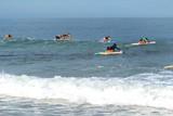 Surfers on Izu peninsula poster