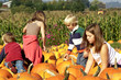 Cute kids looking for just the right pumpkin