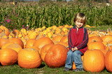 Cute young boy sitting on a pumpkin at the pumpkin patch