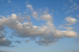 Cumulus white clouds in the dark blue sky poster
