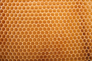 natural honey texture without honey (abstract background)