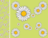 Floral endless pattern - texture poster
