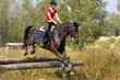 Girl on horse jumping over hurdle