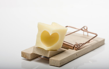 Lovetrap. Heart shaped cheese on mousetrap. Studio shot.