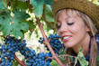 Young woman peasant who looks the grapes in the vineyard