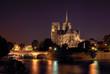 Notre Dame - 9691002