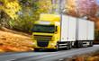 Fototapeta Jesień - Cargo - Ciężarówka