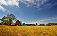 "Постер, картина, фотообои ""Scenic Farm Landscape"""